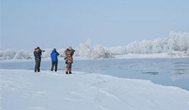 新疆额尔齐斯河流域现唯美雾凇景观