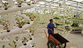 农业创新助推精准扶贫