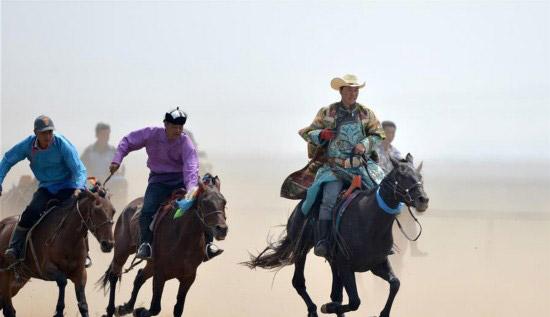 蒙古马逐渐回归蒙古族牧民生活