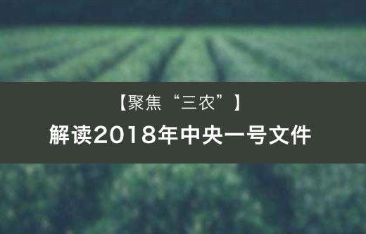 【聚焦三农】解读2018年中央一号文件
