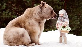 俄罗斯棕熊与人类家庭共同生活 宛如一家