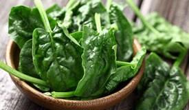 春菜多吃五种蔬菜,尝鲜还养生!