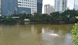 海南:到2020年消灭城市黑臭水体