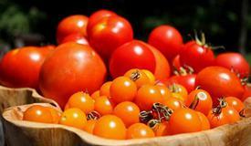 """熟吃西红柿每天一瓣蒜 这些""""降压方""""护血压"""
