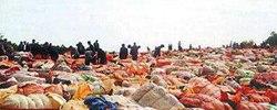 挡住洋垃圾 惠及全世界长期来看,中国禁止洋垃圾入境,对世界各国均会产生积极作用。[阅读]