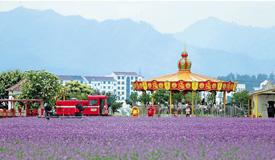 浙江:和諧生態 孕育綠色新動能