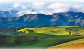 江布拉克草原:天山下的盛夏之约