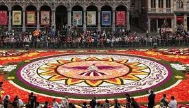 布鲁塞尔鲜花地毯