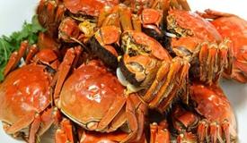 中秋团圆吃螃蟹!营养师说这样吃才好!