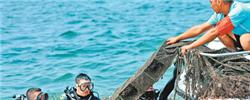 """秦皇岛:一湾碧海哪里来""""海水更清了。""""游客感受到的美,背后是秦皇岛为环境保护与生态治理付出的努力。[阅读]"""