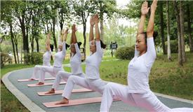 """你的瑜伽練對了嗎?教你避開""""瑜伽病"""""""