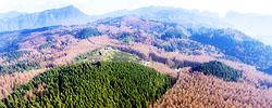 """""""石頭山""""裡生""""林海""""重慶南川山王坪實施石漠化治理,植樹造林造出萬畝""""林海"""",森林覆蓋率達95.5%。﹝閱讀﹞"""