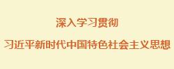 领航新时代的理论思维习近平新时代中国特色社会主义思想贯穿着领航新时代的理论思维,三方面谈体会。[阅读]