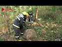 66斤野生大蟒蛇