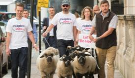 英反脱欧人士在白厅前放羊示威