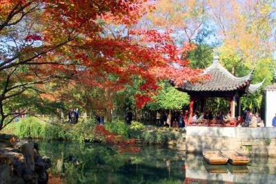 """苏州园林""""枫""""景迷人"""