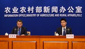 全国生猪生产进入了止降回升的转折期