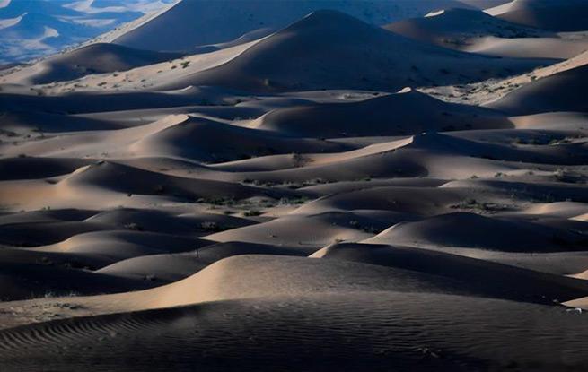 腾格里沙漠夏日即景