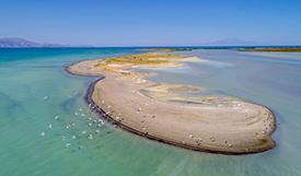 受气候变化影响 土耳其凡湖水位下降