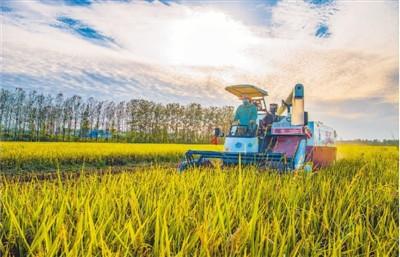 持续拓展农民就业空间和增收渠道
