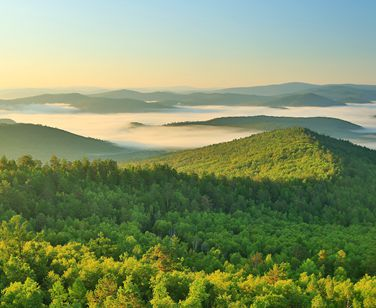 """国家林草局发布""""十三五""""时期全国森林旅游发展十件大事"""