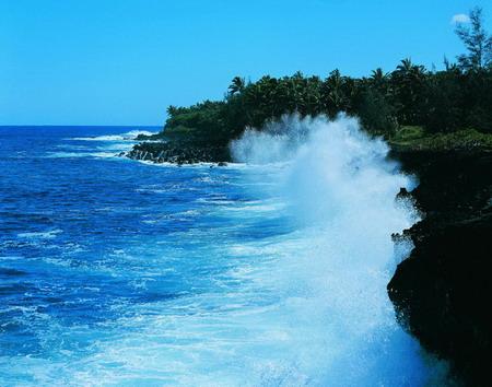 南沙群岛的特点是什么(共9篇)