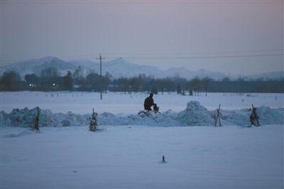 昨日,延庆县,一路人从雪堆中穿行。