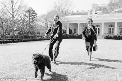 罗纳德・里根在白宫草坪上遛狗时,玛格丽特・撒切尔也加入进来。
