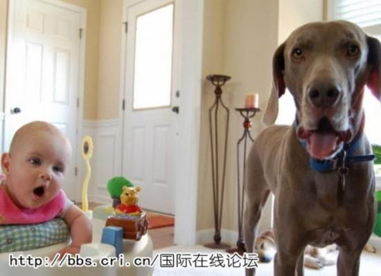 小孩子们喜欢与小动物相伴是儿童特有的天性.