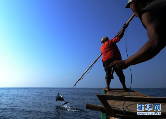 (XHDW)(11)印尼传统捕鲸村渐无鲸可捕