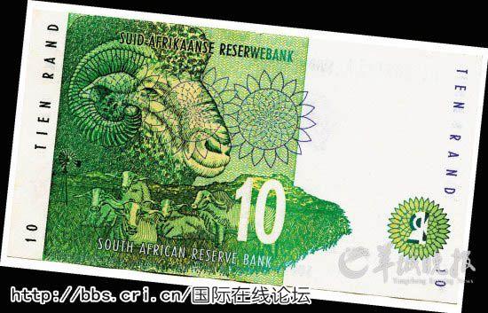 波尔/南非10兰特背面的南非波尔羊。