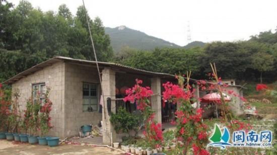 龙岭/龙岭山上,小川所说的花圃和砖头房其实是花农住的地方...