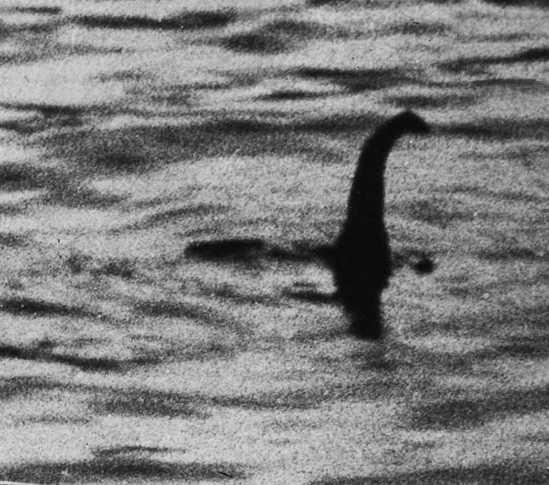 1934年,医生罗伯特・威尔逊出示了一张据称他在当年4月19日抢拍到的尼斯湖怪的照片,因为这张照片,尼斯湖怪名扬全球。但在1994年3月,一个名叫克里斯蒂安的90岁老人向两名寻找尼斯湖怪的科研人员忏悔,著名照片上的湖怪是他和其他四人用玩具潜水艇、塑料和木头制作的。