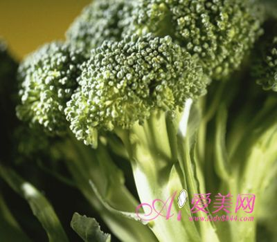 晋菜面食300例_男性保健菜100例_戊子日元命例100例