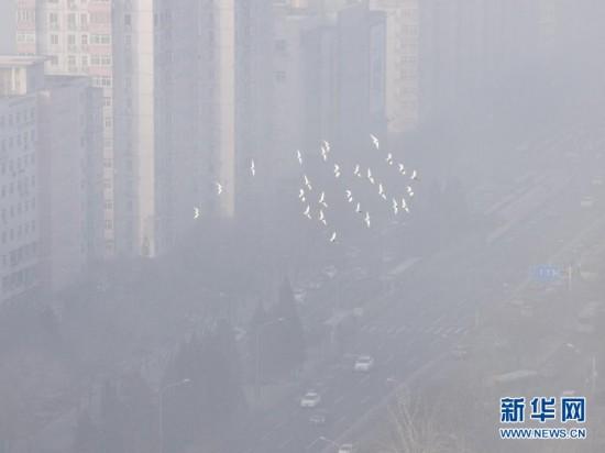 """#(生态)(3)北京PM2.5指数濒临""""爆表"""" 空气质量持续六级严重污染"""