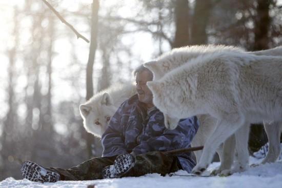 德国男子 与狼共舞 40年