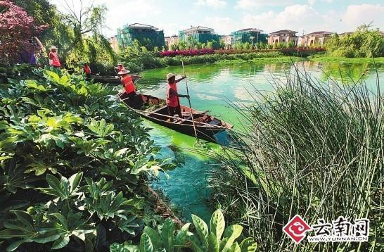 境有深入研究的云南农业大学研究生处处长、资源与环境学院教授张乃图片