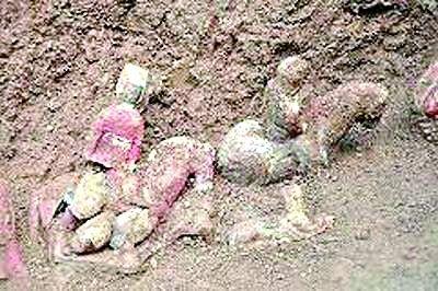 西安北周家族墓入选十大考古发现名单现东罗马金币