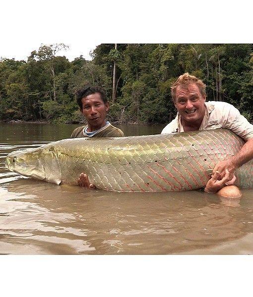英国男子钓上一条巨型巨滑舌鱼重226斤(组图)