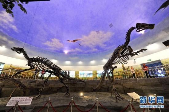 ...化石(3月13日摄).黑龙江嘉荫恐龙国家地质公园位於