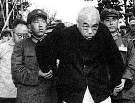 历史的见证:为习仲勋,彭德怀翻案(图)【3】