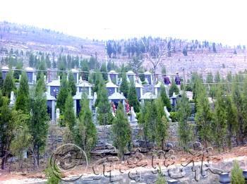 农村墓地设计图样