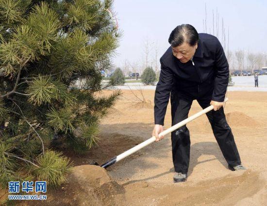 (XHDW)(4)党和国家领导人参加首都义务植树活动