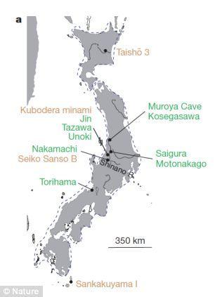 研究人员对从日本各地搜集到的各种各样的陶器进行研究