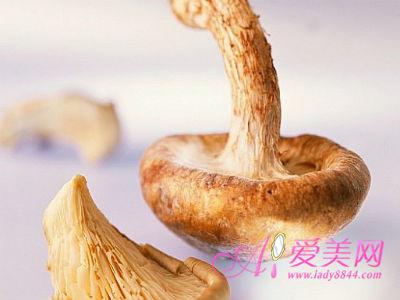菇类7大营养价值 强健牙齿 抗癌降血脂