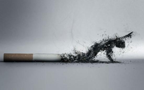 日学者称吸烟者更长寿 吸烟易致癌系弥天大谎