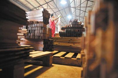 红酸枝类不少树种被列入公约,或将影响红酸枝原材料的价格。 新京报记者 李飞 摄