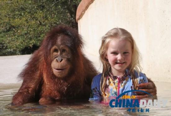 国小女孩与好友猩猩