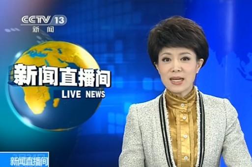 央视女主持女主持人被抓电影图片,央视李小萌