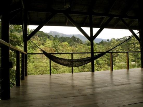哥斯达黎加热带雨林里的树屋(组图)【7】